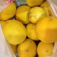 Big juicy lemons!
